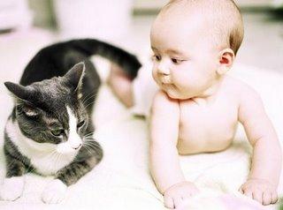criancas-gatos